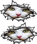 Small handed Oval Ripped Pair Metal Design With White Cat Face Motif Vinyl Car Sticker 85x50mm Each